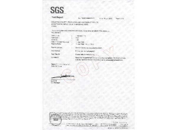 SGS检验报告-英文